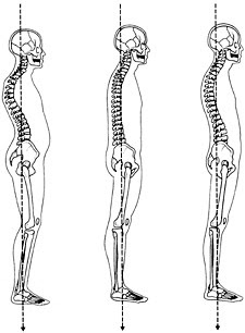 spine-alignment